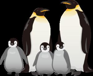 皇帝ペンギン親子のイラスト