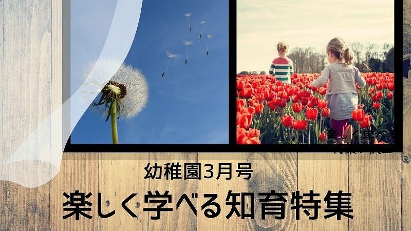 幼稚園3月号知育特集