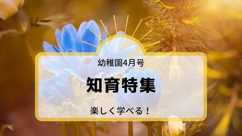 幼稚園4月号知育特集