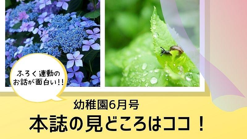 youchien6-honshi-midokoro